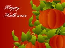 Glücklicher Halloween-Kürbis   Stockfotos