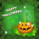 Glücklicher Halloween-Kürbis mit einem Schmetterling auf einem grünen Hintergrund vektor abbildung