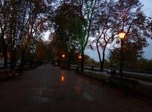 glücklicher Himmel des Parks setzt Lichter auf die Bank Lizenzfreies Stockbild