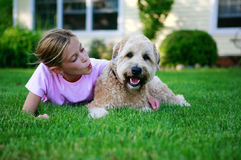 Glücklicher Hund Lizenzfreies Stockfoto