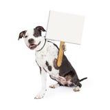 Glücklicher Hund, der leeren Wegweiser hält lizenzfreie stockfotografie