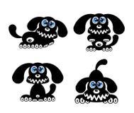 Glücklicher Hund mit blauen Augen Stockfotos