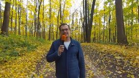 Glücklicher Journalist berichtet vom Herbstpark für Fernsehen stock video