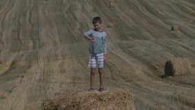 Glücklicher jugendlich Junge, der mit Papierflugzeug auf einem Heuschober vor dem hintergrund des geernteten Feldes spielt stock video