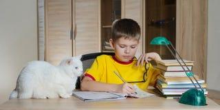 Glücklicher Junge, der Hausarbeit mit Katze und Büchern auf Tabelle tut getrennte alte Bücher Stockfotos