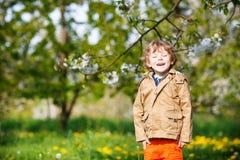 Glücklicher kleiner blonder Garten des Kleinkindjungen im Frühjahr mit blühendem AP Stockfotos