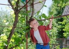 Glücklicher kleiner Junge, der auf einem Metallrahmen klettert Stockbild