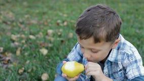Glücklicher kleiner Junge, der Erdbeere im Garten isst stock video footage