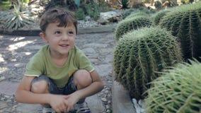 Glücklicher kleiner Junge, der im Park sitzt stock video footage