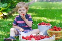 Glücklicher kleiner Kleinkindjunge im Sommergarten mit Eimern reifen s Stockbild
