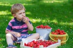 Glücklicher kleiner Kleinkindjunge im Sommergarten mit Eimern reifen s Lizenzfreies Stockbild