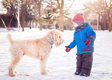 Glücklicher Kleinkindjunge, der draußen mit weißem Hund in Wintertag läuft und spielt Stockbild