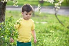 Glücklicher Kleinkindjunge mit den braunen Augen, die auf den Grasgänseblümchen sitzen, blüht im Park Stockbild