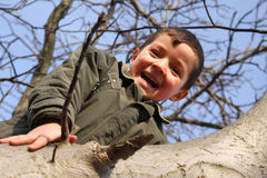 Glücklicher lächelnder Junge, der auf dem Baum steigt Stockfoto