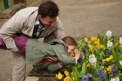 Glücklicher Mann, der ein Kind über dem Blumenbeet hält Stockbild