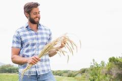 Glücklicher Mann mit seiner Garbe Weizen Stockfotografie