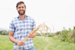 Glücklicher Mann mit seiner Garbe Weizen Stockfotos