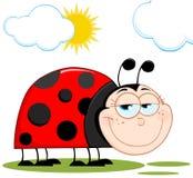 Glücklicher Marienkäfer im Sonnenschein Stockbild