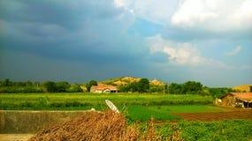 Glücklicher Monsun lizenzfreie stockfotos