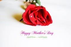 glücklicher Muttertag mit Blume Lizenzfreies Stockbild