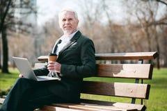 Glücklicher reifer Geschäftsmann, der im Park arbeitet lizenzfreie stockfotografie