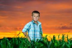 Glücklicher Rest des jungen Mannes auf grünem Feld lizenzfreies stockbild