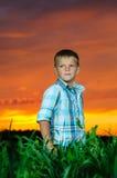 Glücklicher Rest des jungen Mannes auf grünem Feld lizenzfreie stockbilder