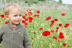 Glücklicher schöner kleiner Junge des blonden Haares in einer Mohnblumenwiese Stockfotos