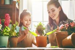Glücklicher Tag der Familie im Frühjahr stockbilder