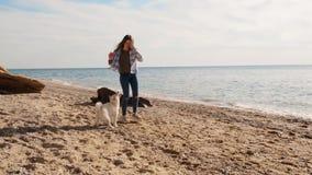 Glücklicher und angezogener weißer shiba inu Hunde-plaing Ball mit dem jungen Mädchen nahe der Seezeitlupe stock video