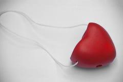 Glücklicher Valentine Day Concept Stockbilder