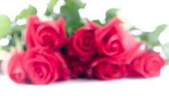 Glücklicher Valentinsgruß der Unschärfe-Rosen-Blumenflora auf weißem Hintergrund Lizenzfreies Stockfoto