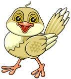 Glücklicher Vogel 02 Stockfotografie