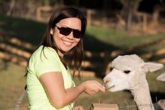 Glückliches Alpaka lizenzfreie stockbilder