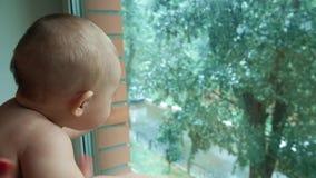 Glückliches Baby, das den Regen hinter Hauptfenster betrachtet stock video footage