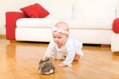 Glückliches Baby, das zum Kaninchenspielzeug kriecht Stockfotos