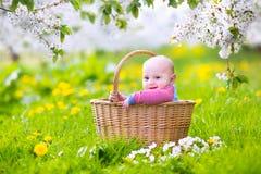 Glückliches Baby in einem Korb in einem blühenden Apfelbaum Stockfotografie