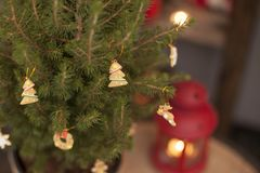 Glückliches Einkaufenmädchen auf weißem Hintergrund Kinder verkaufen Bonbons des neuen Jahres Glatte Karamellstöcke eco Bonbons Lizenzfreie Stockbilder