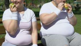 Glückliches fettes Mädchen, das Apfel nach dem Training, lachend über beleibten Mann mit Burger isst stock video footage