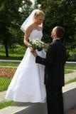 Glückliches geheiratet Lizenzfreies Stockbild