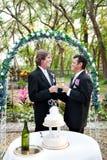 Glückliches homosexuelles Paar heiratet stockbilder