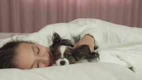 Glückliches jugendlich Mädchen verständigt sich mit Hund Papillon im Bettvorrat-Gesamtlängenvideo stock video footage