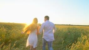 Glückliches junges Paarhändchenhalten und -betrieb durch Weizenfeld bei Sommersonnenuntergang, Spaß habend draußen landschaft stock video footage