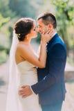 Glückliches Jungvermähltenpaarküssen im Freien am sonnigen Tag mit Parkgasse als Hintergrund Lizenzfreie Stockfotos