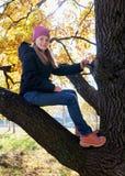 Glückliches Kind, das auf Niederlassung des Baums am sonnigen Herbsttag sitzt stockfotos