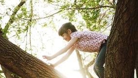 Glückliches Kind geklettert auf den Bäumen Das Mädchen sitzt auf einem Baumast und einem Lächeln Kleinkind spielt im Park stock video footage