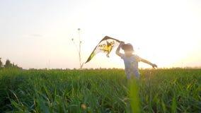 Glückliches Kind mit Luftspielzeug in Hände läuft am Rasen im Sonnenlicht auf Hintergrundhimmel stock video footage