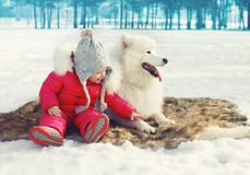 Glückliches Kind mit weißem Samoyedhund auf dem Schnee im Winter Lizenzfreies Stockfoto