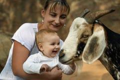 Glückliches kleines Babylachen glücklich beim Sitzen auf den Händen der Mutter zu stockfotografie