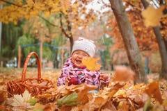 Glückliches kleines Kind, Baby, das im Herbst spielt stockfotos